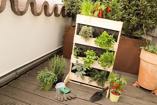 jardín vertical pequeño
