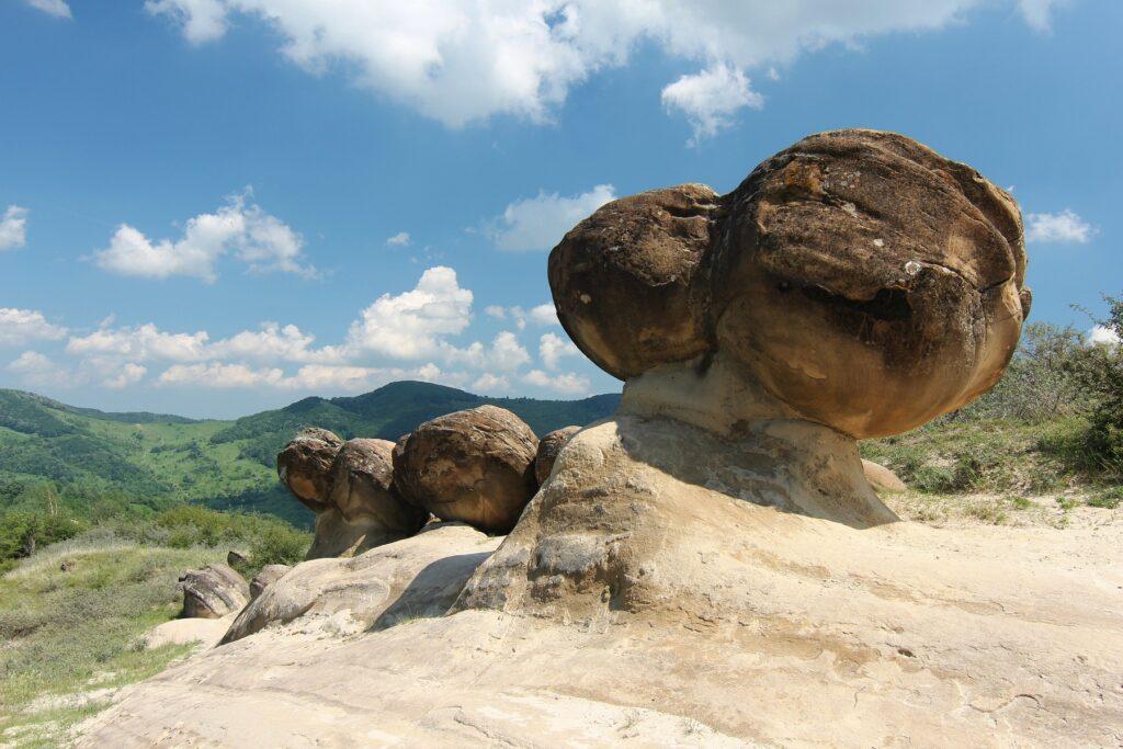 piedras que crecen misterios